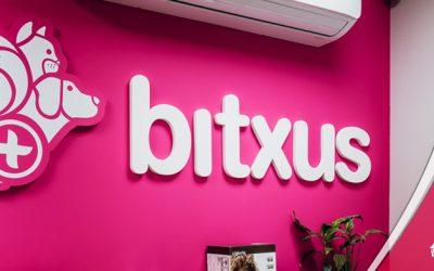 Bitxus estrena pàgina web!
